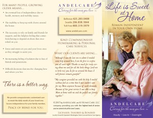Andelcare tri-fold brochure, exterior side