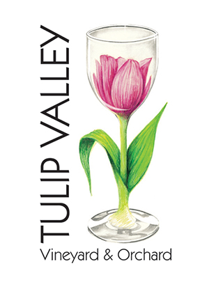 Tulip Valley Vineyard & Orchard logo, with Priscilla Zimmerman