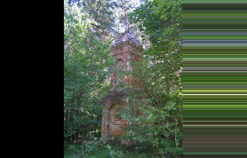 Pomnik Radziwiłłowski w lesie Hola