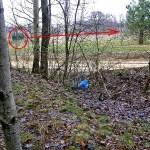 """Umocnienia Twierdzy Brzeskiej Umocnienia Polowe wokół """"Fortu lit. K"""" w Kobylanach"""