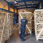 Papierosy warte miliony ukryte w drewnie ujawnili funkcjonariusze z Koroszczyna