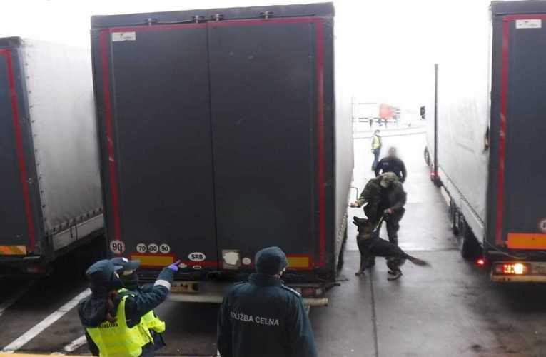 Ukryli się w naczepie ciężarówki jadącej z Serbii do Rosji