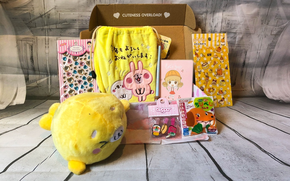 Kawaii box unboxing cuteness overload