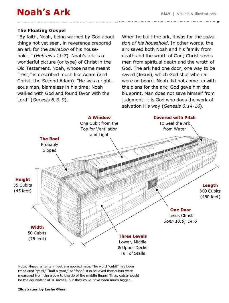 example pages from the study guide illustration page noah s ark  [ 800 x 1056 Pixel ]