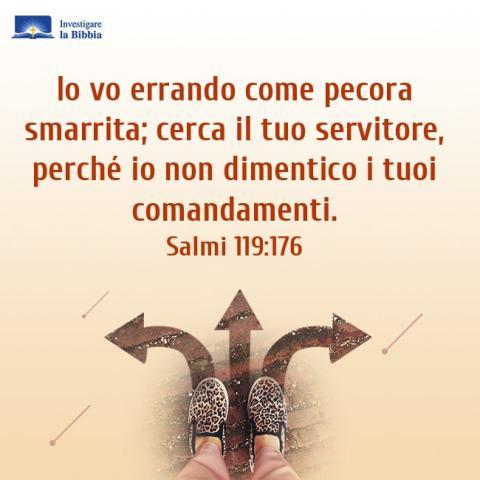 Possa Dio guidare la direzione della vita