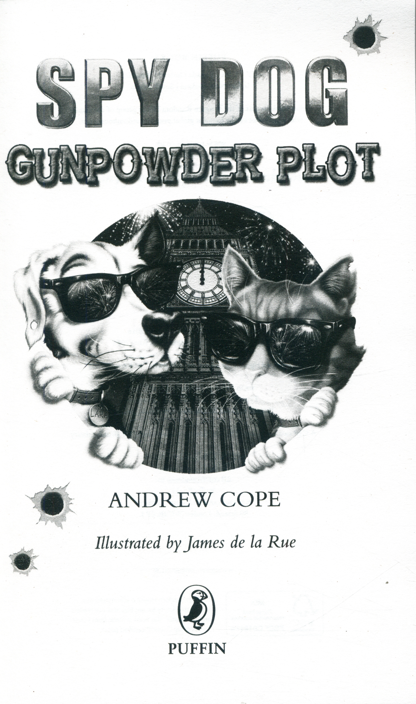 Gunpowder Plot By Cope Andrew