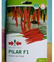 gambar benih cabai besar f1