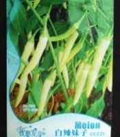 gambar benih cabe rawit putih sret