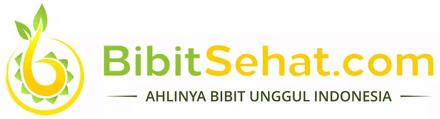 BIBITSEHAT.COM
