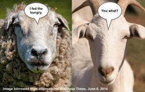 SheepGoat