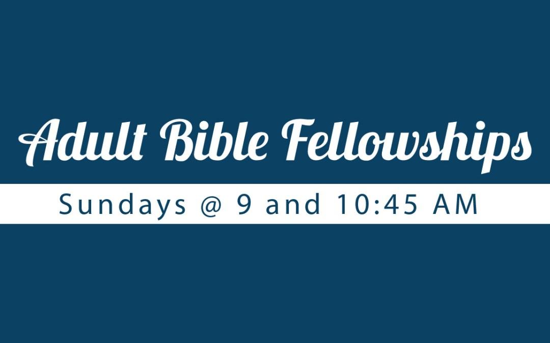 Adult Bible Fellowships 2014