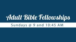 14 Adult Bible Fellowships