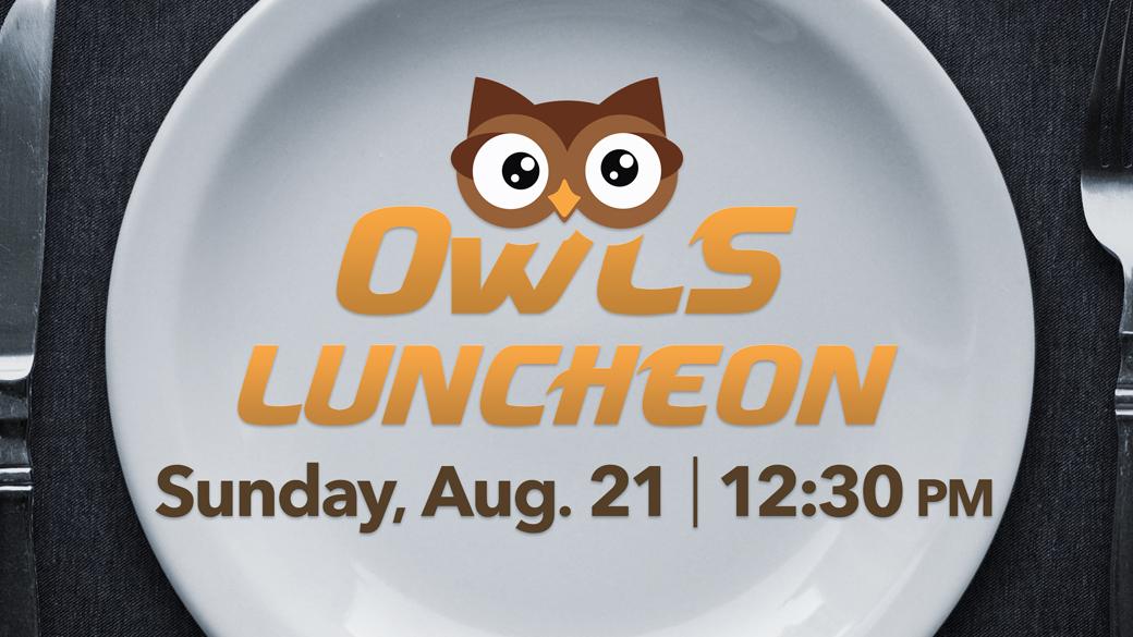 OWLS Baked Steak Luncheon