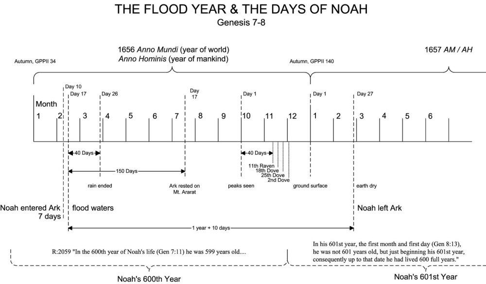 medium resolution of flood year noah
