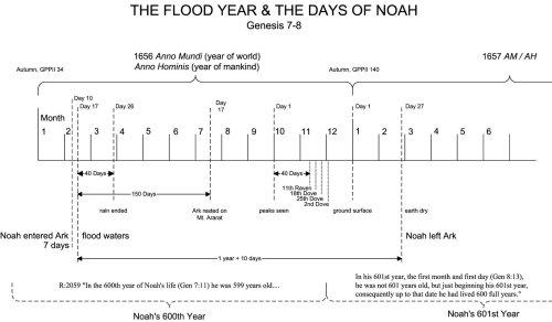 small resolution of flood year noah