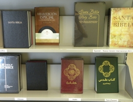 Bible in other languages