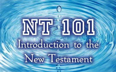 NT101