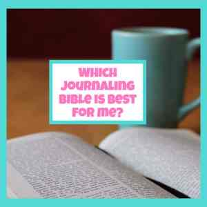 bible journal selection tool