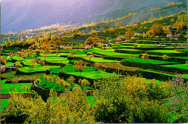 https://i0.wp.com/www.biblelife.org/Hunza-Terraced-Fields.jpg