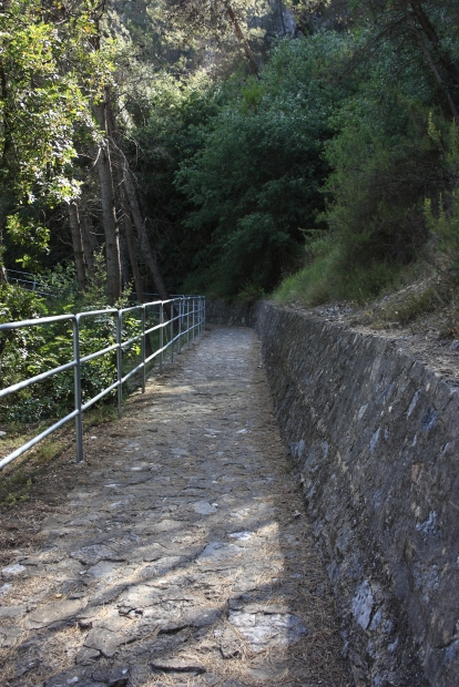 A Path to Follow