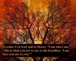 exodus-3-14