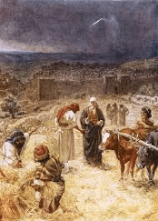David buys the threshing floor from Araunah where Solomon will later build the Temple