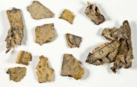 New Dead Sea Scroll