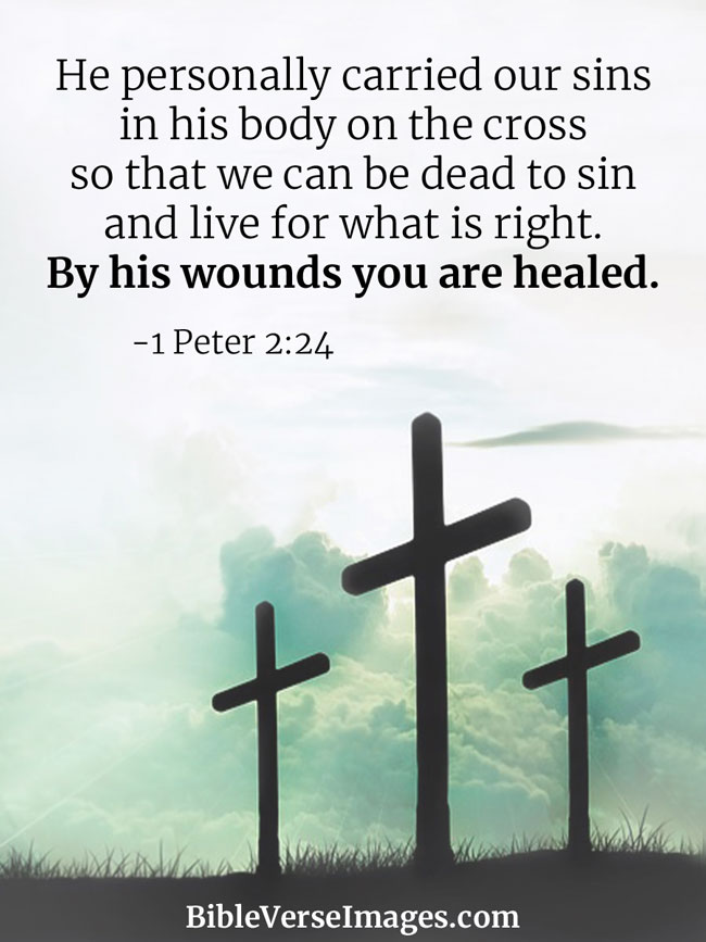 Tree With Quote About Family Wallpaper Bible Verse About Healing 1 Peter 2 24 Bible Verse Images