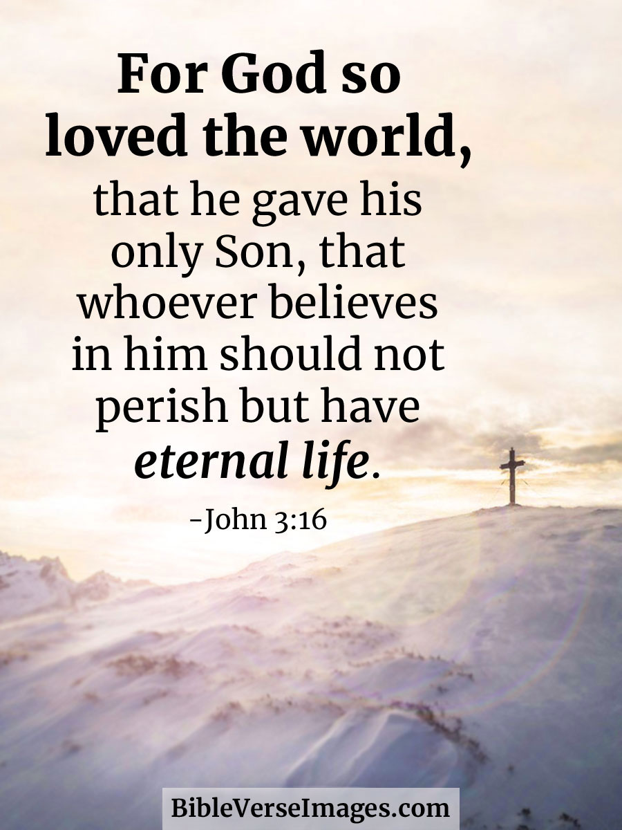 Image result for for god so loved the world that he gave his only son