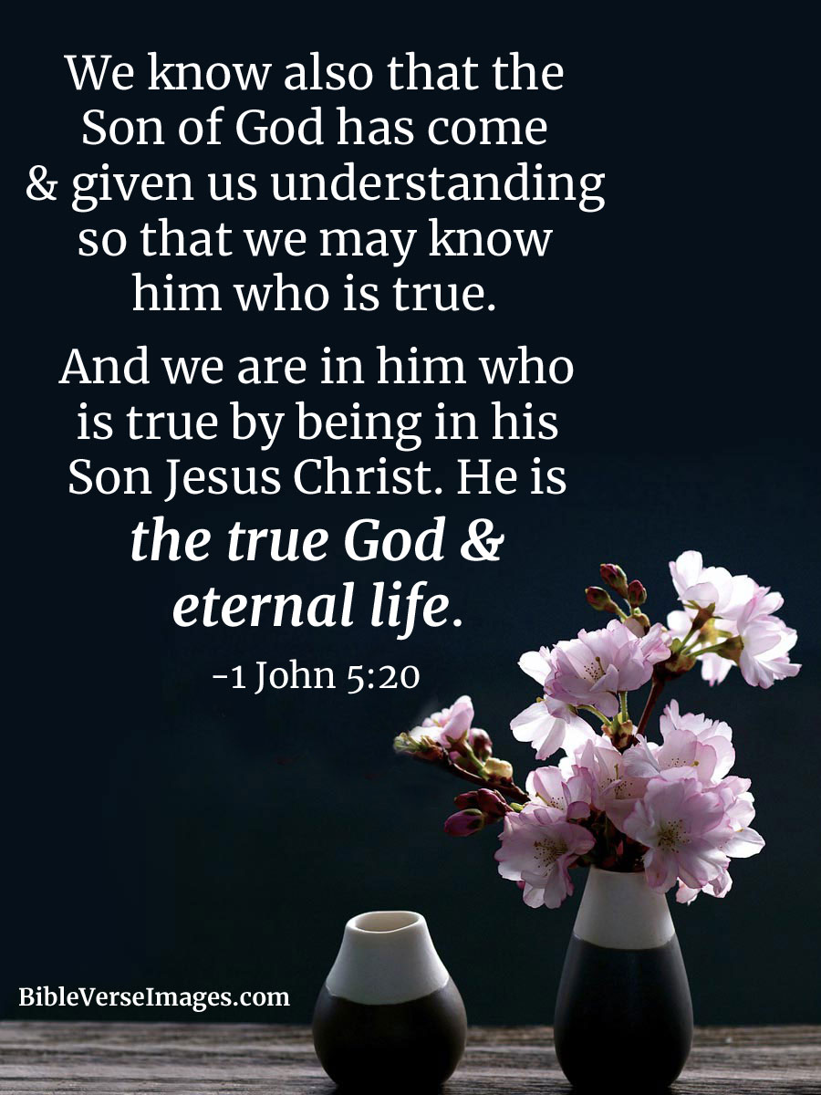 bible verse about life