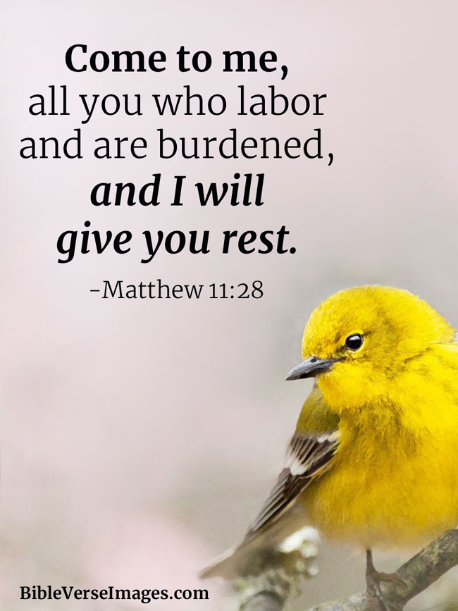 Me Rest I And All Weary Will Matthew 11 Who Are Give You And Come You Burdened 28