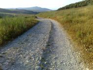 Roman road in Hashofet creek