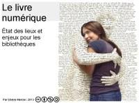 2013-03-10 12_41_21-Livre numérique Toulouse - Google Drive