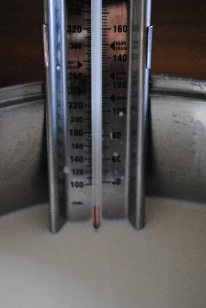 homemade mozzarella - thermometer