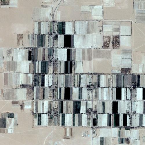 M.Cadioli, Desert Drawing- 2012 50x75 cm