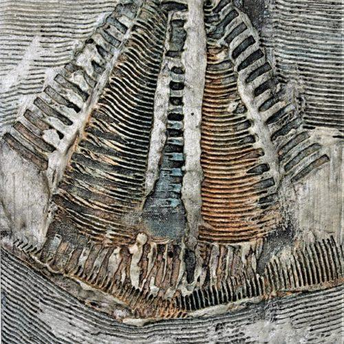 V.Gatti, Memoria di un pesce 2 - 2005 40x30 cm