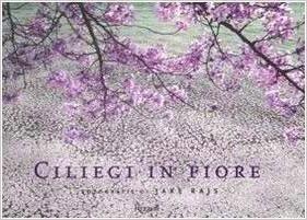 libro ciliegi in fiore rajs