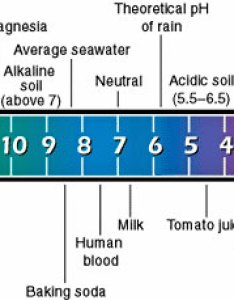 Perhaps now that  am living in sanctuary surrounded by two rivers which envelop us on three sides will get back to my waters of life book and finally also water alkalinity  ph rh bibliotecapleyades
