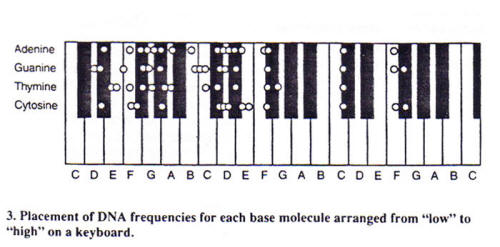 Our body's DNA is coded to resonate on the scale of A4= 432 Hz Cymatics18_05_small