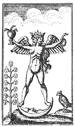 THE ALCHEMICAL ANDROGYNE