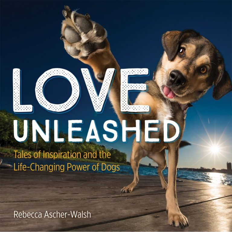 Review: Love Unleashed, by Rebecca Ascher-Walsh