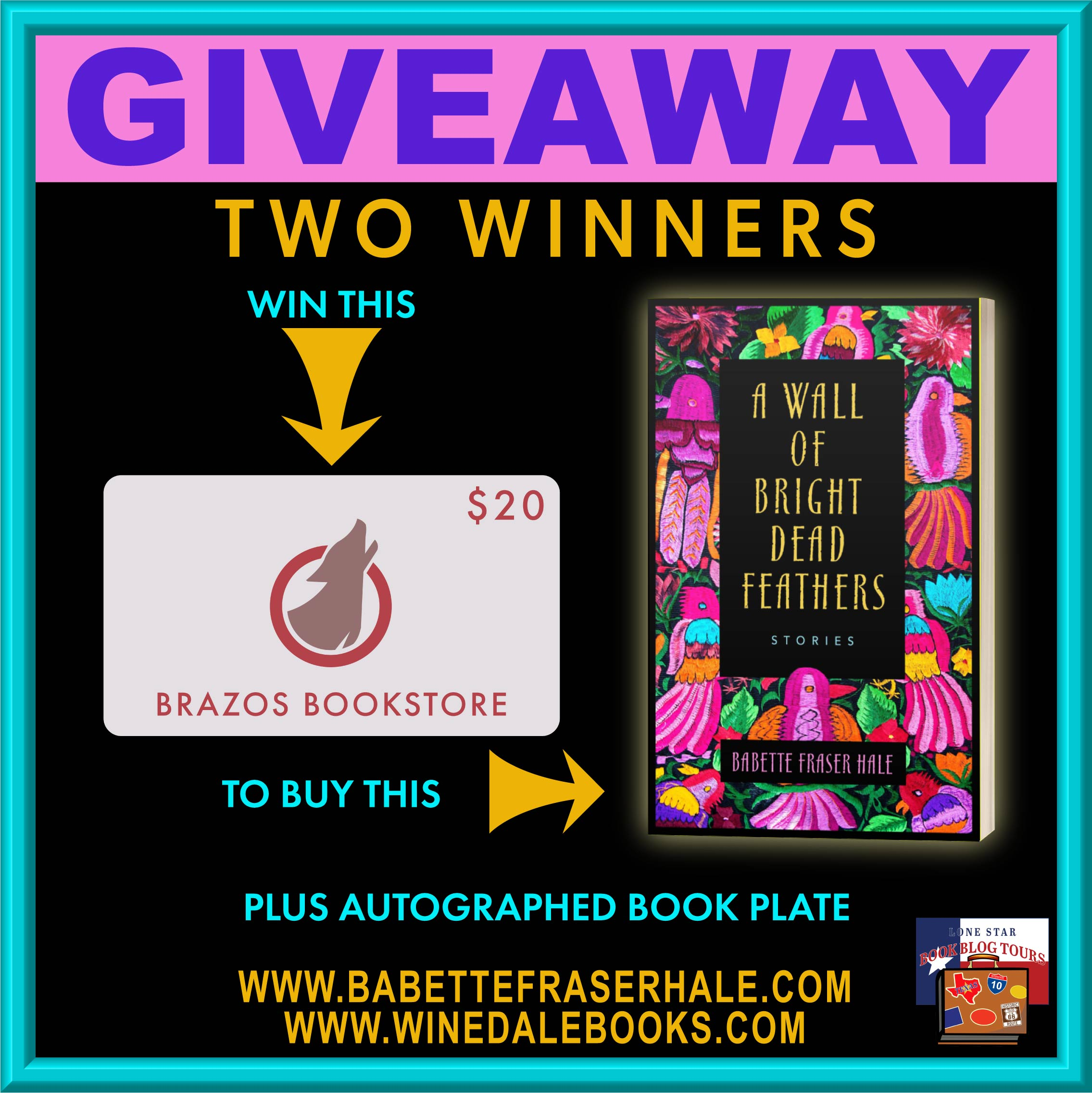 Review & Giveaway: A Wall of Bright Dead Feathers by Babette Fraser Hale