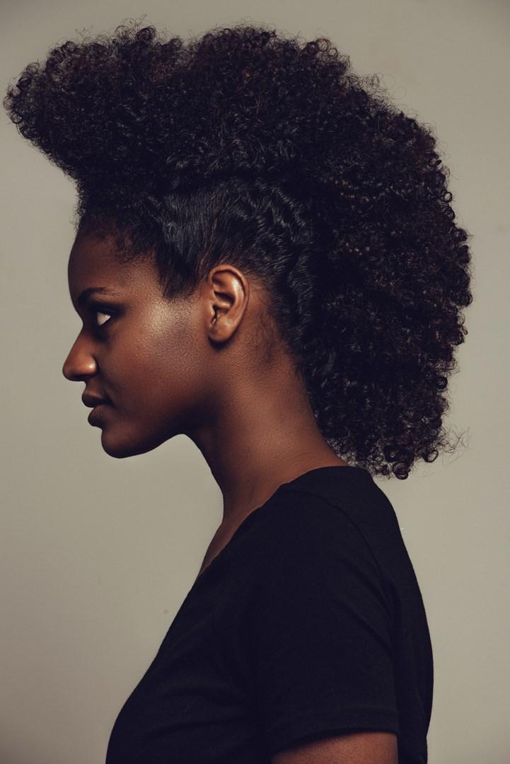 Les tendances coiffure afro  Biblond pour les coiffeurs