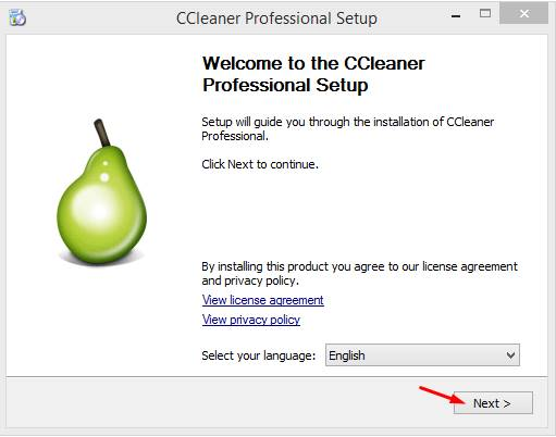 ccleaner pro key Pic 1