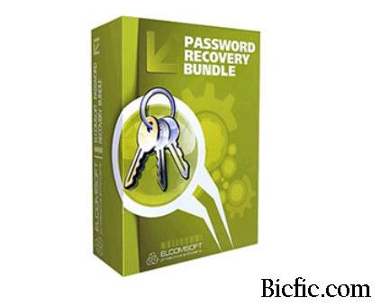 password recovery bundle crack