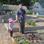 Our Own Organic Garden Plot in a Community Garden