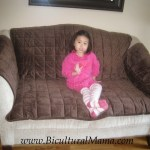 Lessen the Mess! Sofa and Auto Protective Covers for Pets and Kids