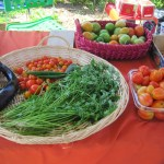 10 Tips to Eat Organic for Less – MOMentum Nation