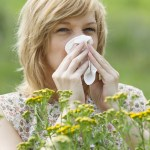Best and Worst Plants for People with Allergies