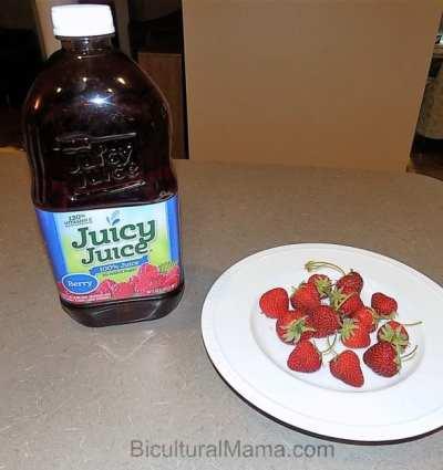 Juicy Juice Juice Pops